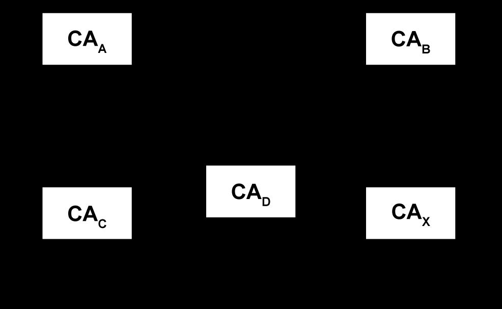 Vertrauensmodelle von Public-Key-Infrastrukturen - nn-Cross-Zertifizierung - Glossar- Cyber-Sicherheit - Prof. Norbert Pohlmann